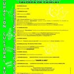 1 Cartel CICLO CULTURAL 2009