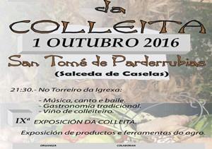 PORTADA-CartazSeran-2016